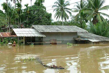 Le Sud de la Thaïlande déclaré zone sinistrée à cause des fortes inondations